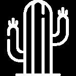 cactus_white