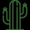 Pelle Cactus
