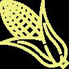 Mais Biopolioli